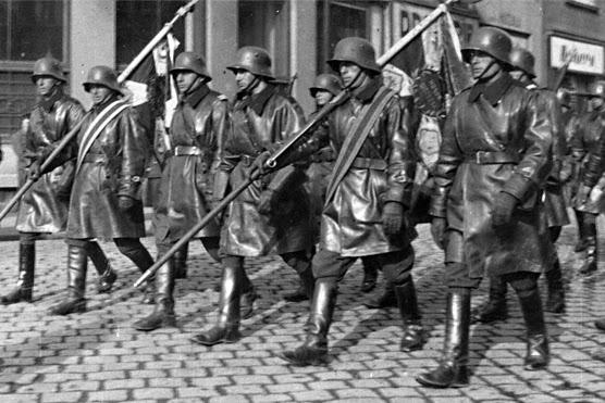 10th_Motorized_Cavalry_Brigade_(Poland)[1]